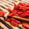 Ningxia Goji Berry Exportador