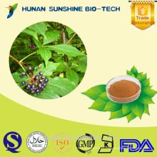 Siberian Ginseng extract Acanthopanax senticosus 1% Eleutherosides Powder
