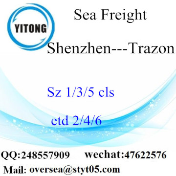 Shenzhen Port LCL Consolidation to Trazon