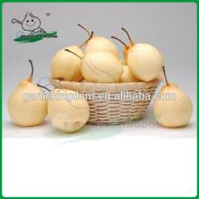 Venta de pera / Ya pear / Fresh ya pera