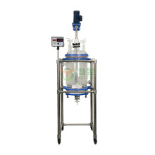 10L Hot sale Chemical Glass Reactor with filter function