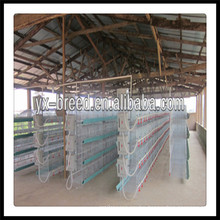 Best Selling Broiler Brooding Cages