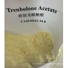 Acetato de Trenbolona Tren a Finaplix Acetato de Trenbolona 10161-34-9