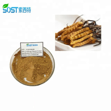 SOST Supply High Quality Ganoderma Cordyceps Sinensis Capsule