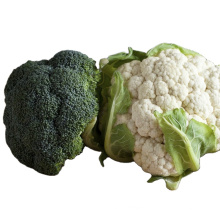 2021 Hot Sale High Quality No Frozen Green Healthy And Natural Broccoli