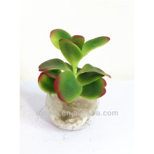 Belle mini usine de bonsaï artificiel avec pot de verre pour la décoration