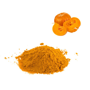 High quality Food Grade Pumpkin Powder powder