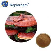 30% Ganoderan Reishi Mushroom Extract
