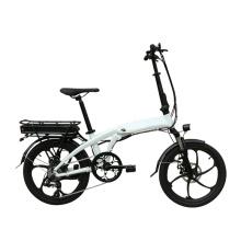 Comfort Folding Bike 36V250W Rear Motor Electric Bicycle