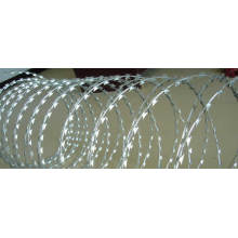 Heißer Verkauf Galvanized Razor Wire SL23