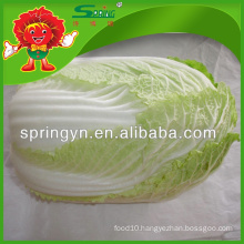 Pollution free frozen flowering cabbage IQF
