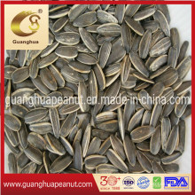 Perfect Quality Sunflower Seeds New Crop with Ce