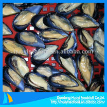 cooked mussel meat with half shell