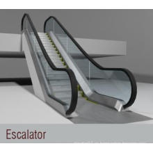 Escalera mecánica (FJF6000-2)