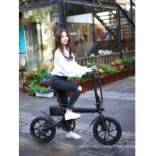 New Products 2020 Lithium Battery Folding E Bike/Folding Electric Bike/Mini Bicycle/Foldable Ebike 250W