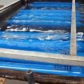 World Famous 2L-80L Seamless Steel Oxygen/Nitrogen/Argon/CO2 Industrial Gas Cylinder