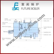Calentador de vapor de gas (Wns1.5-1.0-YQ) mejor vendido
