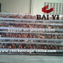 Équipement de cage de volaille pour l'éleveur de poulet