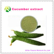 Polvo natural del pepino del extracto natural de la planta de alta calidad