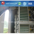 4 Tiers Chicken Egg Cages with Automatic System