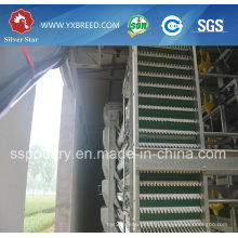 Top Quality Full Automatic Poultry Equipment for Poultry Farming