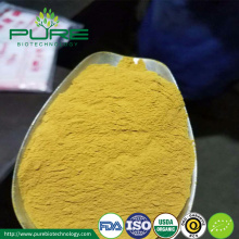 GMP Certified Sea espino amarillo Berry Fruit Powder