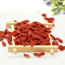Fruit rouge non-organique de baie de Goji séché par air