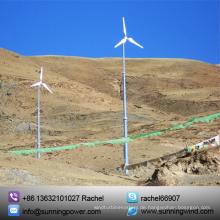 Ce Genehmigen 5000W Wind Power Generation System liefern 380 V in Großbritannien