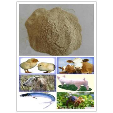 Sell Feed Additives Yeast Powder