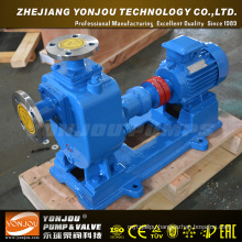 Single Phase Water Pump (zx)