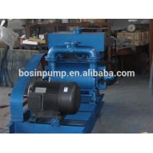 2BEA hoher Kapazität Wasser-Vakuumpumpe--China-Hersteller