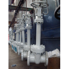 Cast/Forged Bellows Sealing Gate Valve Wzh