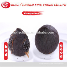 Des expositions d'ail noir de produits sains et sécurisés en Chine