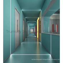 Anti-Microbial Hospital Clean Room Insulation Medical Bed Head Panel Aluminum Composite Sandwich Panel for Hospital Laboratory Wall Roof