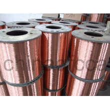 Lautsprecherkabel-Kupfer verkleidet Aluminiumdraht