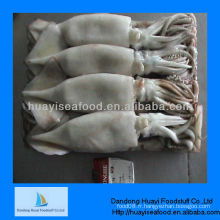 Calamars de bébé congelés