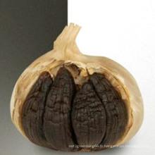 Exportation professionnelle d'ail noir de qualité supérieure