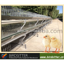 Automatic cage for growing broiler
