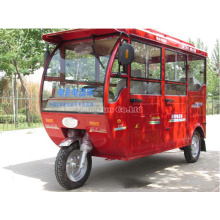 60V*1000W Fully Enclosed Steering Wheel Electric Vehicles