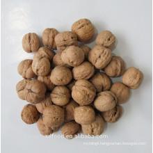 Lulian Thin Skin Walnuts With Shell