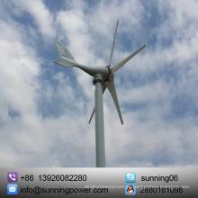 Hergestellt in China Alternative Energiequellen Electric Generator Hybrid System