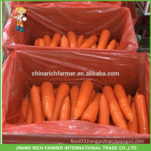 2016 Year New Crop Of China Fresh Carrot