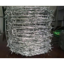 Hot Dipped Galvanized Concertina Barbed Wire