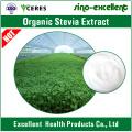 Organische Stevia Extrakt Pulver Natürliche Süßstoffe
