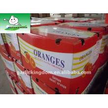 2011 Juicy Mandarin Orange