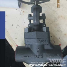 Forged Steel Globe Valve with RF/NPT/Bw Ends