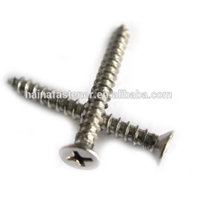 stainless steel Phillips Countersunk self tapping Screw (M2-M10)