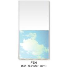 Dekorative innere PVC-Verkleidung (F039)