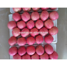 China Rote Fuji Äpfel