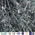 Wholesale umbrella head galvanized roofing nail